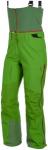 Salewa Antelao Gore-Tex C-Knit Pant Grün, Damen Gore-Tex® Hose, 38
