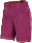Salewa Fanes Durastretch Shorts Lila/Violett, Damen Shorts Damen Shorts ▶ %SAL