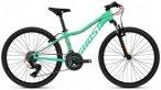 Ghost Mountainbike »Lanao 2.4 AL W«, 16 Gang Shimano Tourney TX Rd-Tx800 8-S S