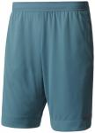 ADIDAS Herren Shorts Climachill Shorts, Größe S in Blau