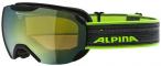 ALPINA Skibrille Arris DH in Schwarz