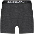 ICEBREAKER Herren Funktionsunterhose / Unterhose Men´s Anatomica Boxers, Größ