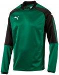 Puma Herren Sweatshirt Ascension Training Sweat, Größe XXXL in POWER GREEN-PUM