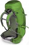 Osprey Atmos AG 50 LG Trekkingrucksack grün,absinthe green