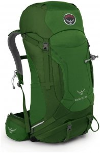 Osprey Kestrel 38 - Tourenrucksack - jungle green - Gr.M/L - 38 Liter