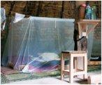 Brettschneider Holiday Box - Moskitonetz gegen Mücken und anderen Insekten - Ho