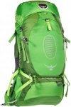 Osprey Atmos AG 65 - Trekkingrucksack - Gr. M - grün|grün / absinthe green