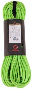 Mammut - Pendi 8.0 Dry - Halbseil Gr 60 m grün/grau/schwarz
