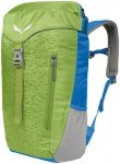 Salewa Maxitrek 16 Backpack leaf green  2018 Trekking- & Wanderrucksäcke