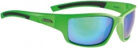 Alpina Keekor Sonnenbrille Grün