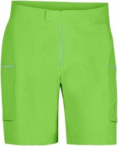 Norrona Herren 29 Light Weight Flex1 Shorts Grün L